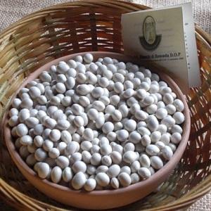 fagioli bianchi di rotonda