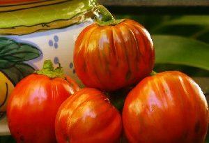 melanzana rossa di rotonda 2