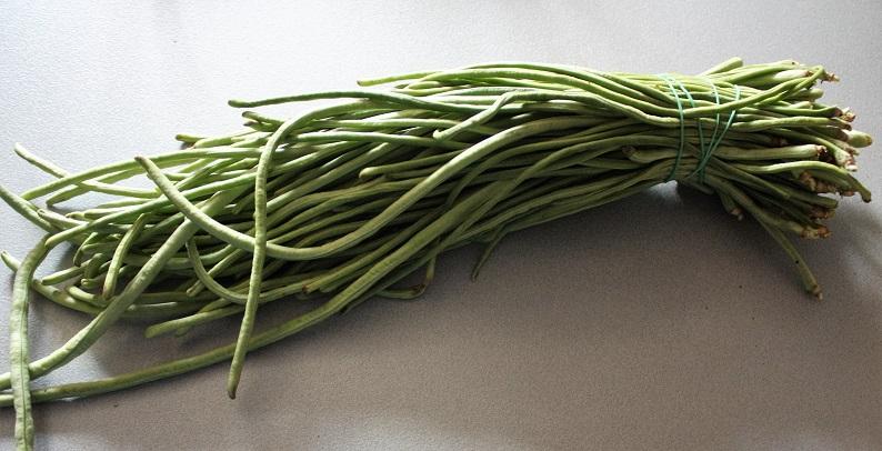fagiolini asparago o fagiolini di Santanna