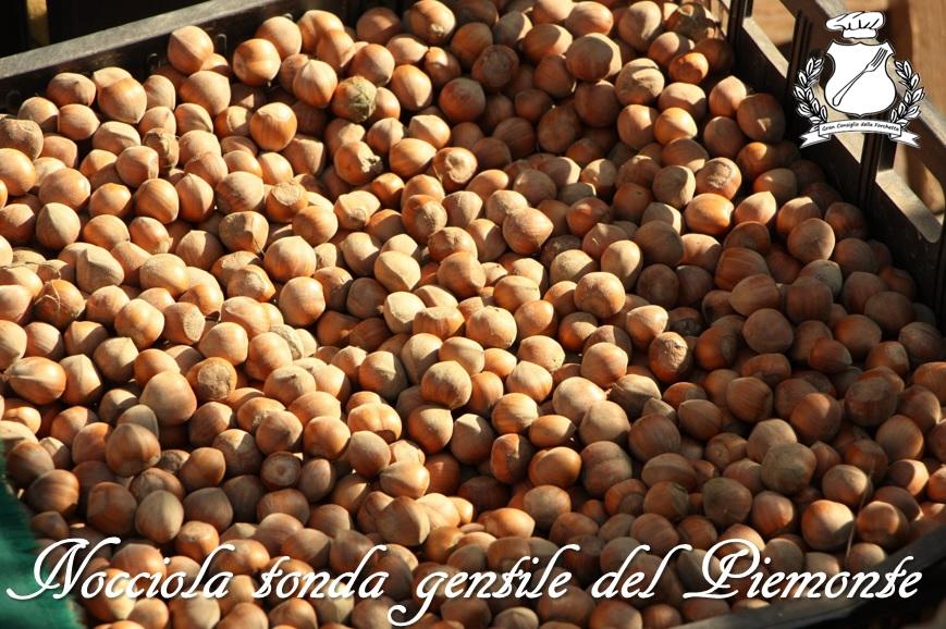Nocciola tonda gentile del Piemonte o Nocciola del Piemonte