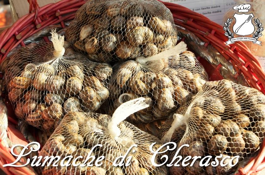 Lumache di Cherasco
