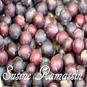 Susine Ramassin - Ramasin