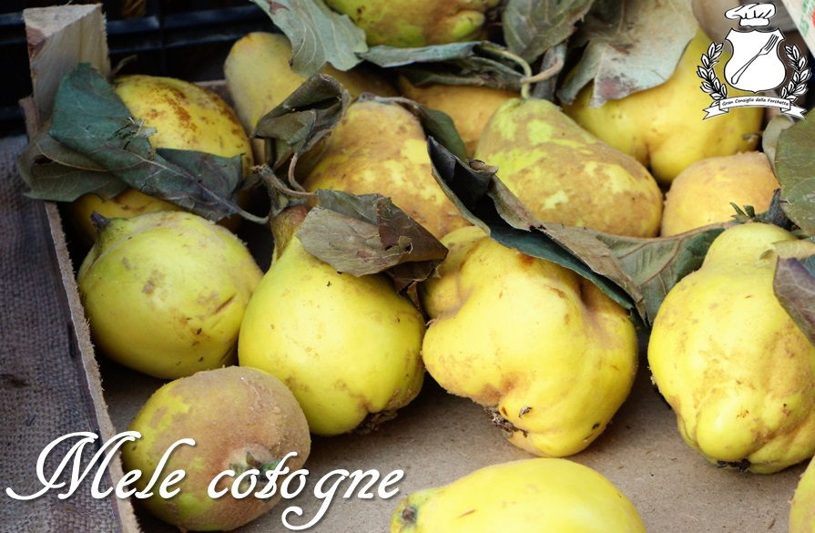 Cotognata leccese - Mele cotogne