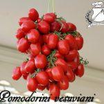 Pomodorini vesuviani