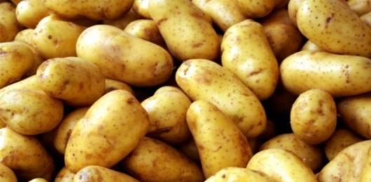 patata dell'alto viterbese