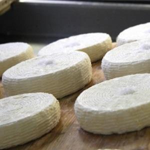 Formaggetta savonese