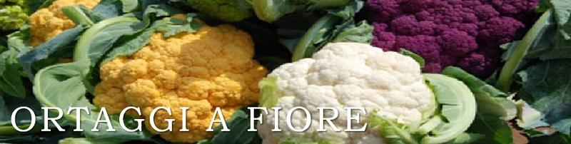 ortaggi a fiore