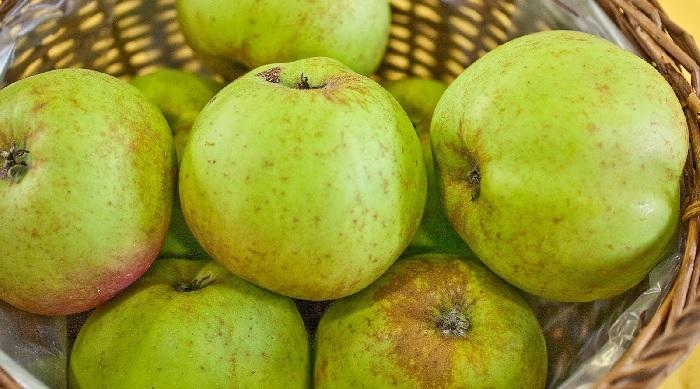 mele renette della valle d'aosta