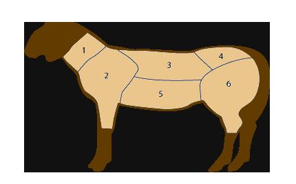 Tagli di carne di ovino