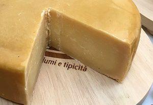 latteria - formaggio m