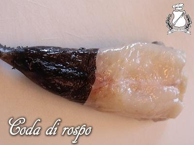 Coda di Rospo (Rana pescatrice)